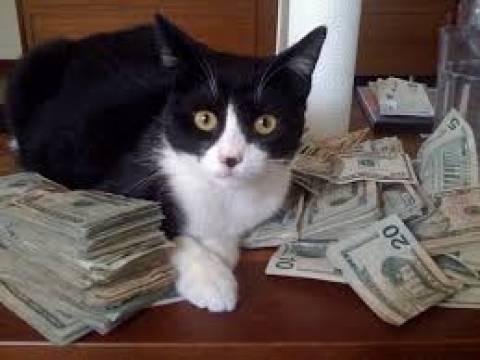 Ρωσία: Στεγαστικό δάνειο και δώρο μία γάτα!