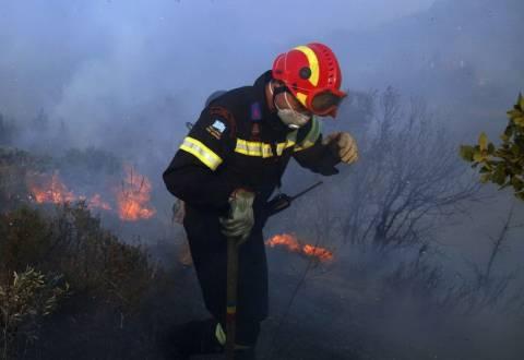Καστοριά: Εκτός κινδύνου ο πυροσβέστης που τραυματίστηκε από παλιά οβίδα