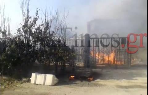 Πάτρα: Πυρκαγιά σε εργοστάσιο ανακύκλωσης - Κάηκαν ζωντανά 4 σκυλιά φύλακες