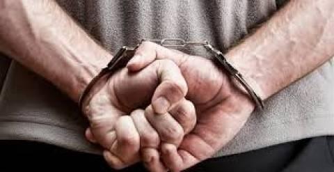 Πύλος: Σύλληψη 34χρονου που καλλιεργούσε 315 δενδρύλλια κάνναβης