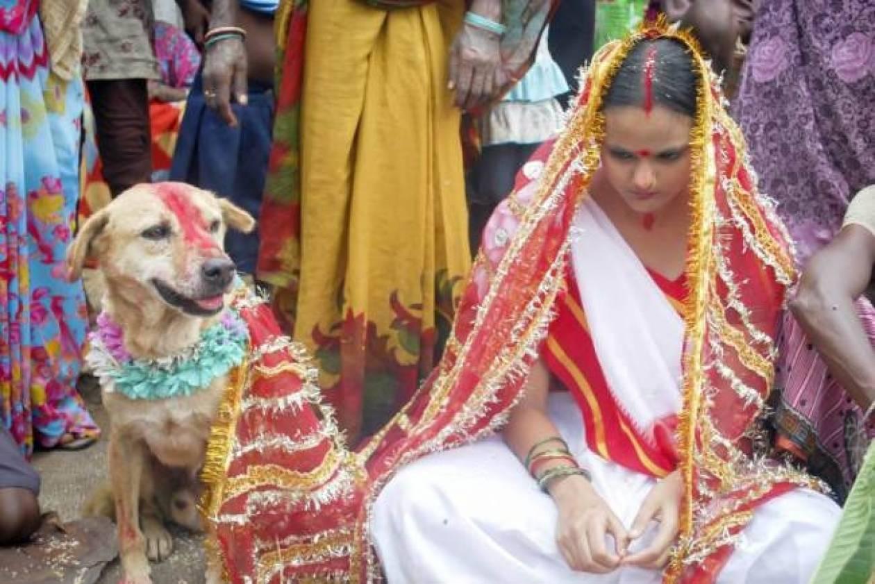 18χρονη παντρεύτηκε έναν αδέσποτο σκύλο! (pics)
