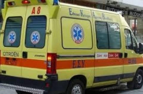 Έβρος: Εντοπίστηκαν δύο πτώματα σε κατάσταση σήψης