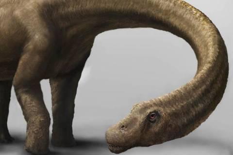 Ανακαλύφθηκε ο μεγαλύτερος δεινόσαυρος που περπάτησε στη Γη (pics)