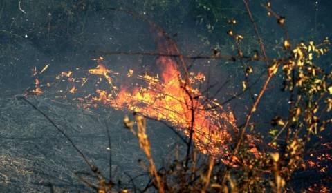Ρόδος: Υπό πλήρη έλεγχο η φωτιά στον Άνω Καλαμώνα