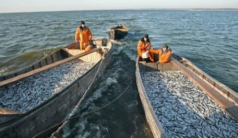 Επιχειρησιακά προγράμματα επαγγελματικής αλιείας