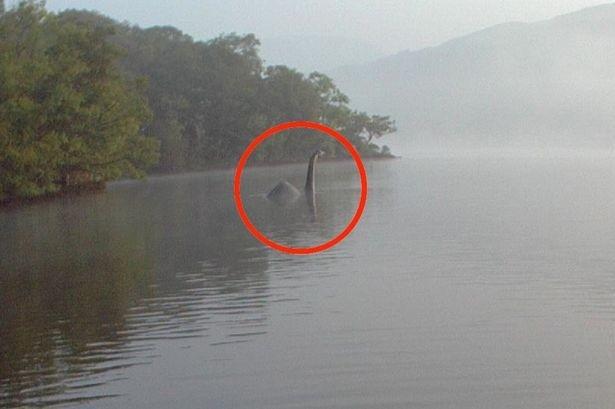 Τέρας του Λοχ νες: Νέες φωτογραφίες του σε λίμνη