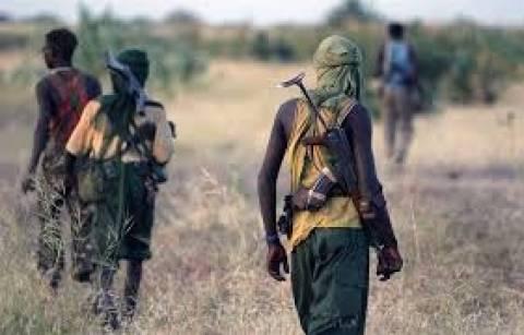 Νιγηρία: 80 ισλαμιστές της Μπόκο Χαράμ σκότωσε ο στρατός