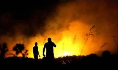 Τρίπολη: Ξεκίνησε η καταβολή των αποζημιώσεων στους πυρόπληκτους της Πελοποννήσου