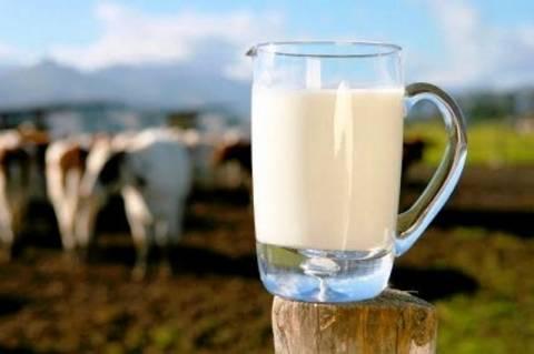 Σύσκεψη την Τετάρτη στο ΥΠΑΝ για τη μείωση της τιμής του φρέσκου γάλακτος