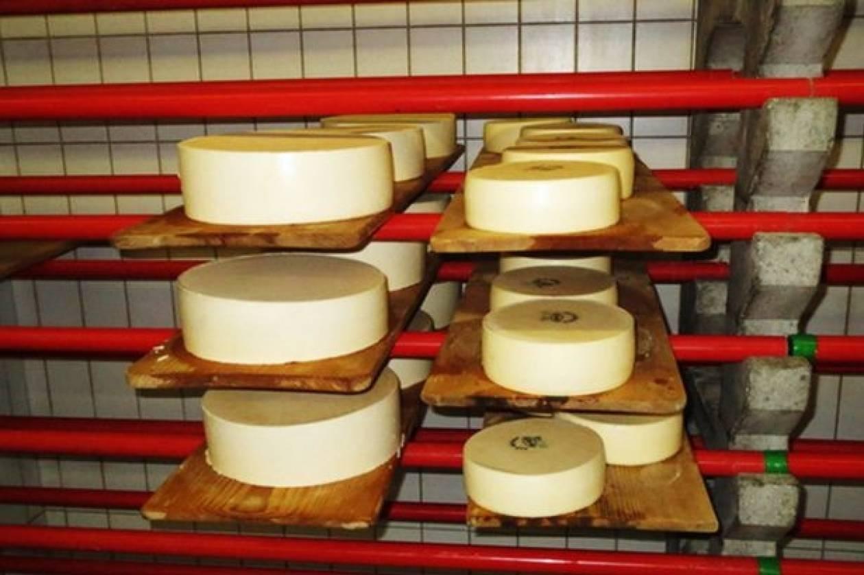 Λιχτενστάιν: Θανατηφόρο… τυρί  σκορπά τρόμο στις Αρχές!