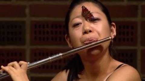 Έπαιζε όργανο και προσγειώθηκε πάνω της μία... πεταλούδα (βίντεο)