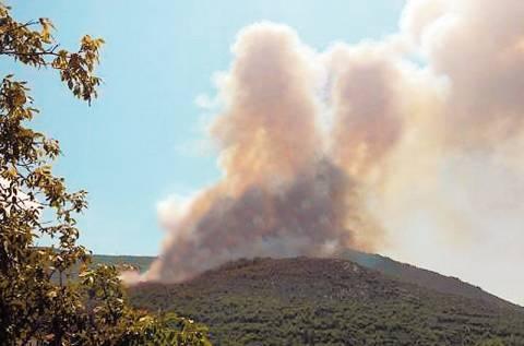 Μυτιλήνη: Υπό έλεγχο η φωτιά
