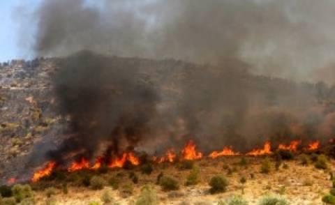 Κρήτη: Πυρκαγιά σε εξέλιξη στο Αμάρι