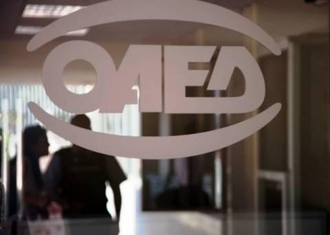 ΟΑΕΔ: Ξεκινούν την Τετάρτη οι υποβολές αιτήσεων ωρομίσθιου εκπαιδευτικού προσωπικού