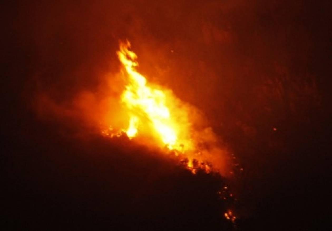 Εύβοια: Πυρκαγιά στον Άγιο Λουκά Αλιβερίου
