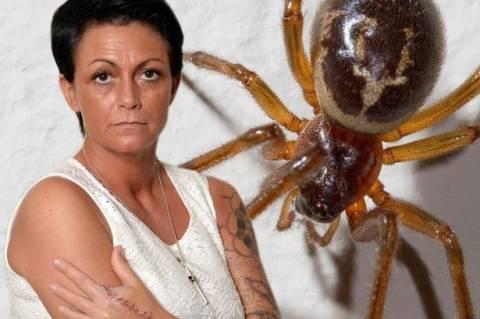 Έφτασε ένα βήμα πριν το θάνατο μετά το τσίμπημα αράχνης