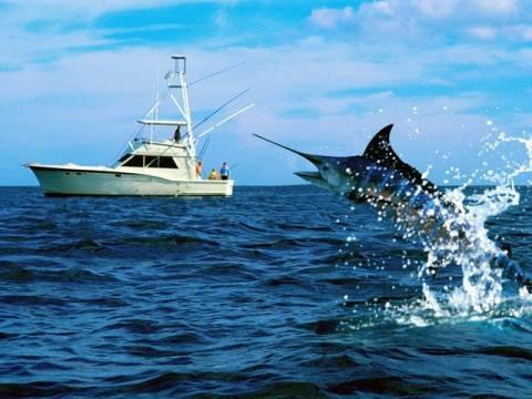 Κρήτη: Απαγόρευση αλιείας ξιφία