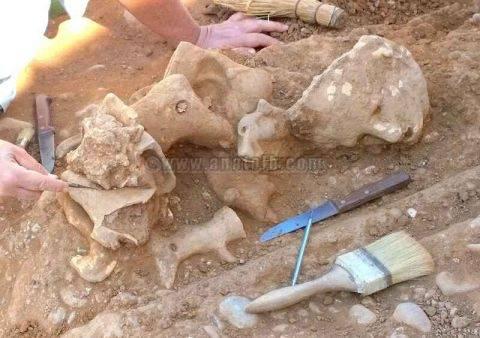 Κρήτη: Σημαντικά ευρήματα από την ανασκαφή στους τάφους της Αρχαίας Καμάρας