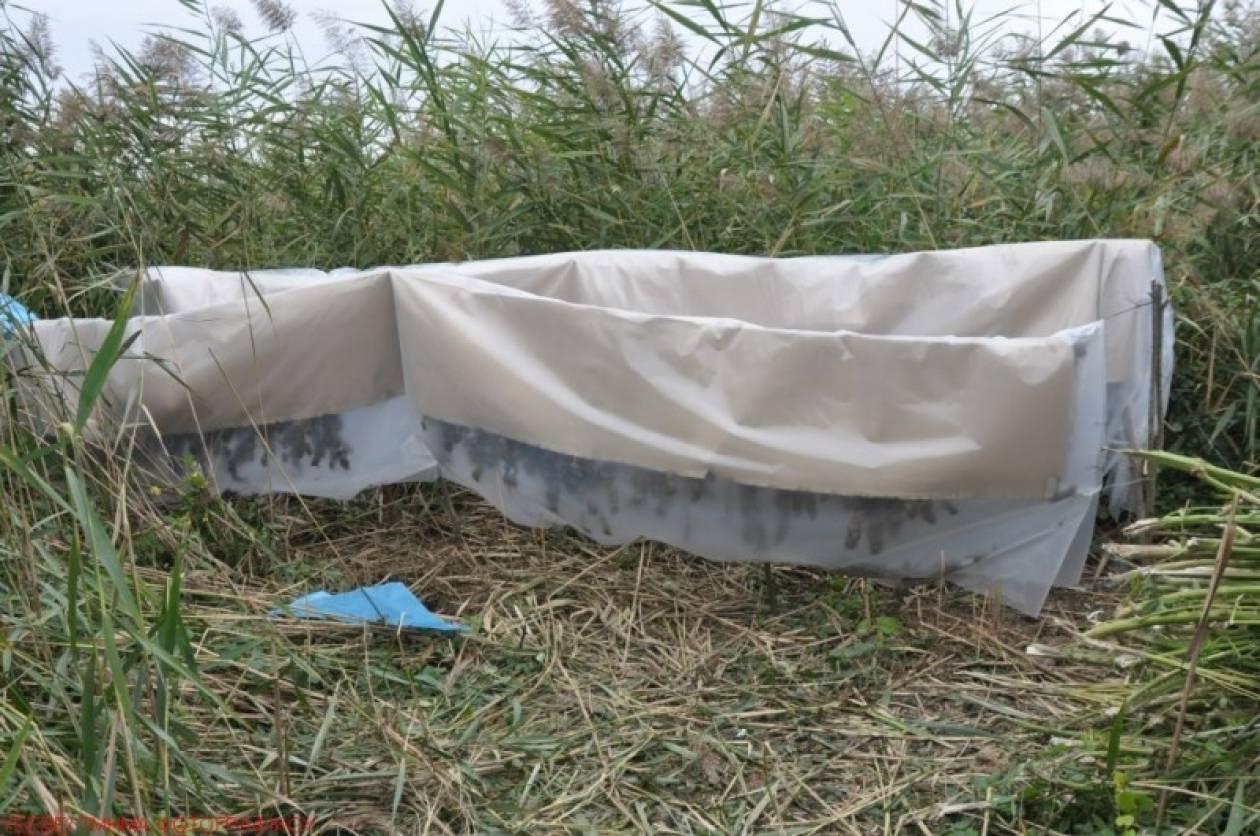 Θεσσαλονίκη: Βρέθηκε αποξηραντήριο κάνναβης σε αγροτική περιοχή (pic)
