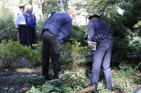 Νέα Υόρκη: Αρκούδα πέρασε τη γέφυρα και βρέθηκε νεκρή στο Σέντραλ Παρκ