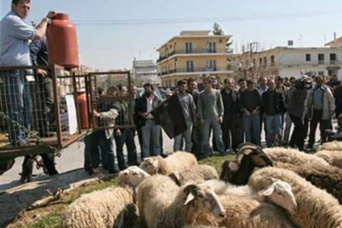 Συγκέντρωση διαμαρτυρίας κτηνοτρόφων στο Σουφλί