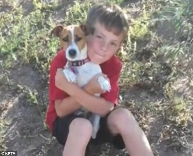 Δεκάχρονος πέθανε από τσίμπημα αράχνης (pics)