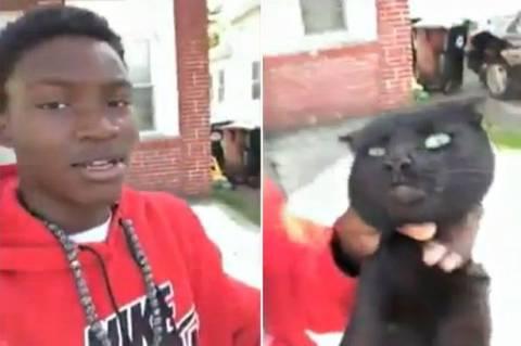 Έφηβος έπνιξε γάτα γιατί έφαγε το φαγητό του σκύλου του (σκληρό βίντεο)