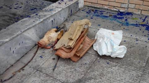 Πέταξαν το κεφάλι ενός γουρουνιού έξω απο την Ένωση Μουσουλμάνων (pics)