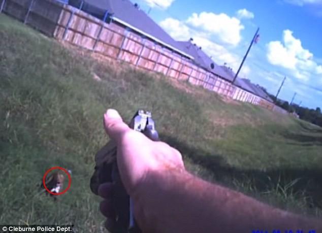 ΗΠΑ: Αστυνομικός φώναξε κοντά του σκύλο για να τον πυροβολήσει! (vid)