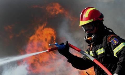 «Συναγερμός» στην Πυροσβεστική: Πυρκαγιά στη Στροφυλιά