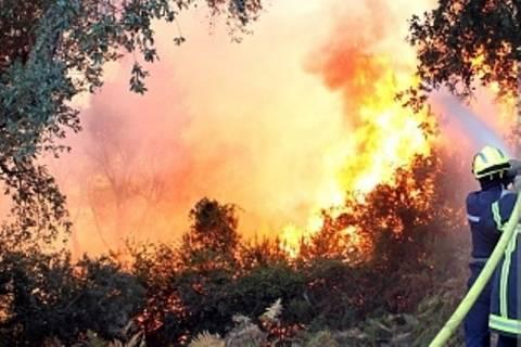 Γαλλία: Φονικοί άνεμοι στα ανατολικά - Μεγάλη πυρκαγιά στην Κορσική
