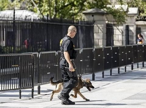 Δάγκωσε αστυνομικό σκύλο στον Λευκό Οίκο και τώρα τρέχει και δεν φτάνει…