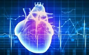 Επιστήμονες δημιουργούν τεχνητή καρδιά με 3-D βιοεκτύπωση