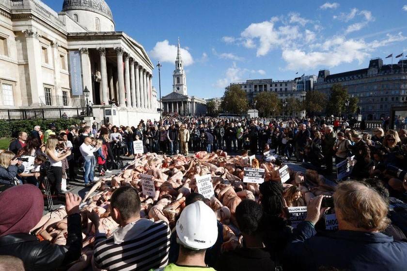 Βάφτηκε «με αίμα ζώων» το Λονδίνο