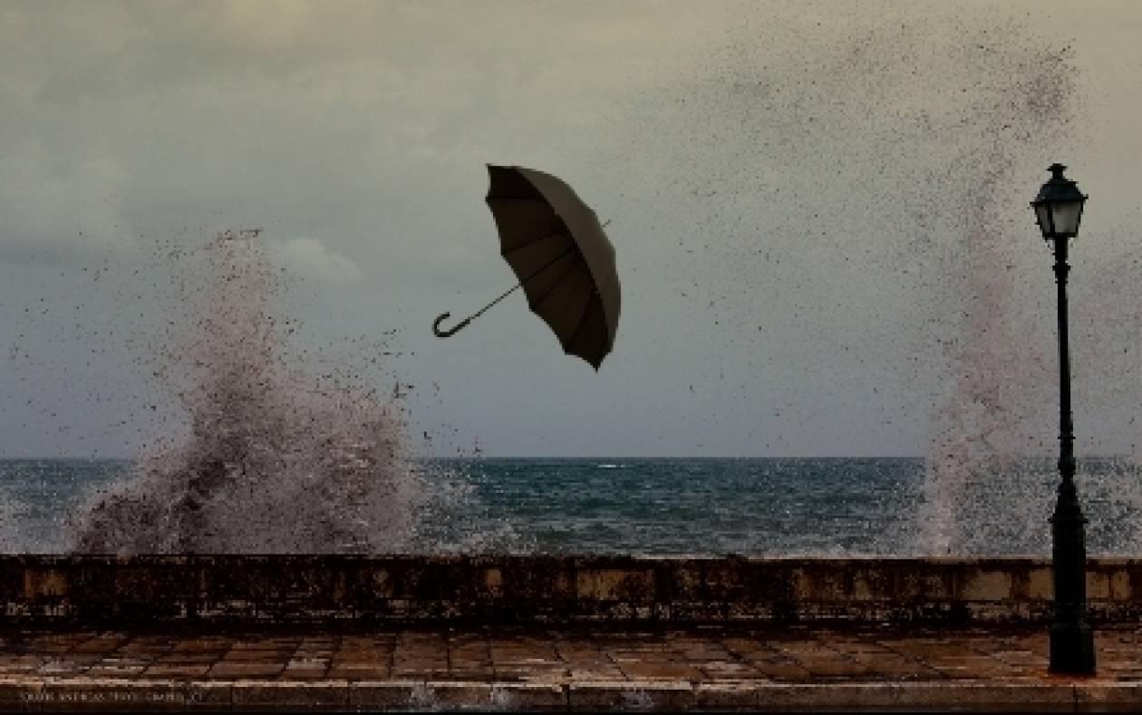 Ισχυροί άνεμοι ξεριζώνουν δέντρα στην Πρέβεζα(Pics)