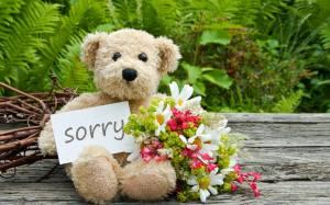 Ζήτα του συγνώμη ανάλογα με το ζώδιό του!