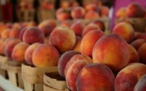 Ρωσία: Υποψίες ότι τα Σκόπια κάνουν επανεξαγωγή φρούτων