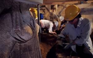 Το αστείο βίντεο από τις ανασκαφές στην Αμφίπολη!