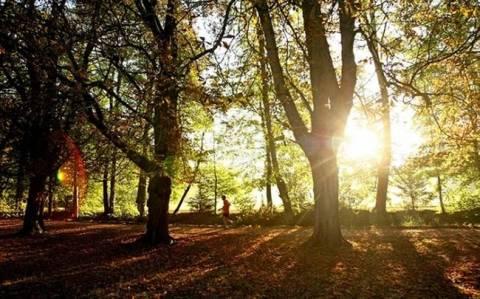 Самый теплый октябрь с 1880 года