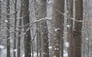 Χειμωνιάτικος ο καιρός στη Κύπρο