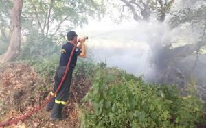 Υπό μερικό έλεγχο η πυρκαγιά στον Κουτσουρά