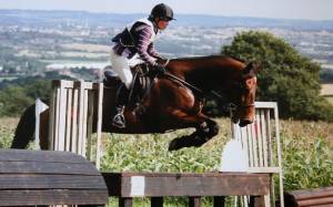 Έκανε ευθανασία στο άλογό της και αυτοκτόνησε (pics)