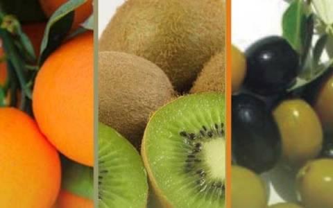 1η Γιορτή πορτοκαλιού, ακτινιδίου και ελιάς στην Άρτα