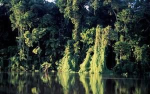 Περού: Οικολογική καταστροφή στον Αμαζόνιο