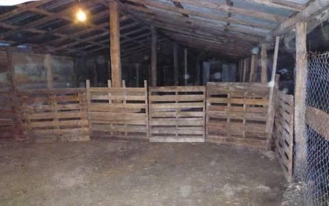 Ζαγόρι: Βοσκός εγκλωβίστηκε σε στάβλο λόγω κακοκαιρίας
