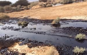 Από τεράστια οικολογική καταστροφή απειλείται το Ισραήλ