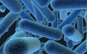 Κίνδυνος για εκατομμύρια θύματα από ανθεκτικά μικρόβια
