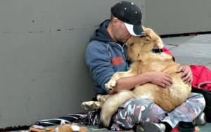 Τα σκυλιά αγαπούν, δεν τα απασχολούν πόσα χρήματα έχετε