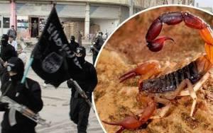 Οι τζιχαντιστές ρίχνουν βόμβες με ζωντανούς σκορπιούς