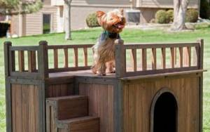 5 σπιτάκια σκυλιών πραγματικό... όνειρο!
